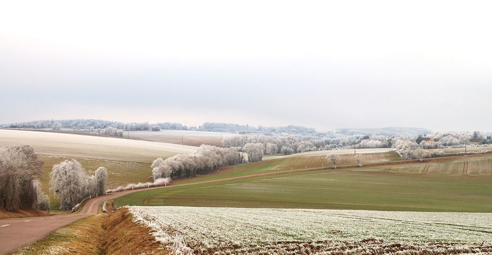 Agriculture Agriculture Beauty In Nature Campagne Check This Out Cielo Girl Igersyonne Landscape Nature Outdoors Sky And Clouds Vert Winter
