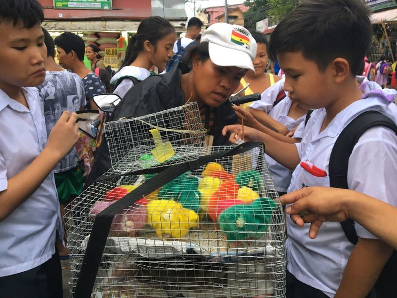 Schoolchildren buy dye-coloured chicks from an enterprising woman selling all sorts of living creatures like spiders, ducklings, multi-coloured chicks, hermit crabs, gold fish and others at a busy neighbourhood in Taguig, Metro Manila. Real People Boys Education Childhood Learning Outdoors Day Friendship People Colored Chicks Vendor Taguig Manila Philippines Chicks Animal Vendor Animals
