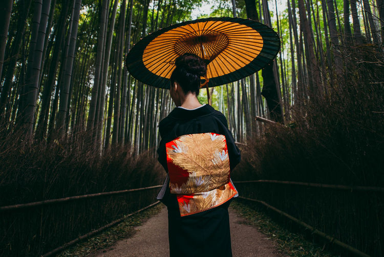 Rear view of woman with umbrella standing in forest during rainy season