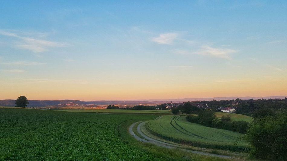 Swabian Sunset Herrenberg Sunset Colorfull Rurual Scene Landscape Nature Green Tranquil Scene Field Farm Haslach