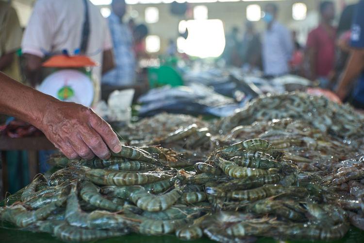 Man holding fish at market