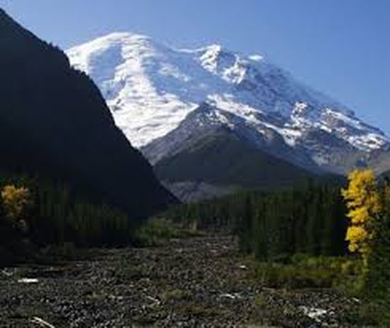 Beauty In Nature Landscape Mountain Mountain Range Outdoors Scenics Snow Snowcapped Mountain White River Mt Rainier