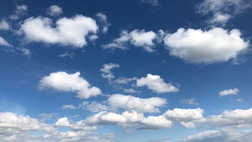 Cloud heaven Cloud - Sky Sky Beauty In Nature Scenics - Nature Low Angle View Tranquility Blue Tranquil Scene Day White Color Cloudscape No People Nature Backgrounds Meteorology Outdoors Idyllic