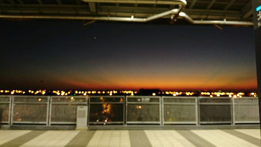 我循歸雁南飛…寄一紙傾情……,漫天光影…是點滴的思念焚心…欲言…滿目澀然、欲語…胸懷神傷……,在妳轉身後起身…將那熱切封存……在空洞降臨前…北返…… Hanging Out Taking Photos Missing You Missing Sunset