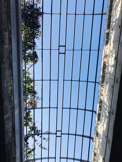 Architecture Building Exterior Window Built Structure Day No People Reflection Outdoors Modern Growth Skyscraper Tree Sky City Nature Water EyeEmNewHere Perspectives On Nature