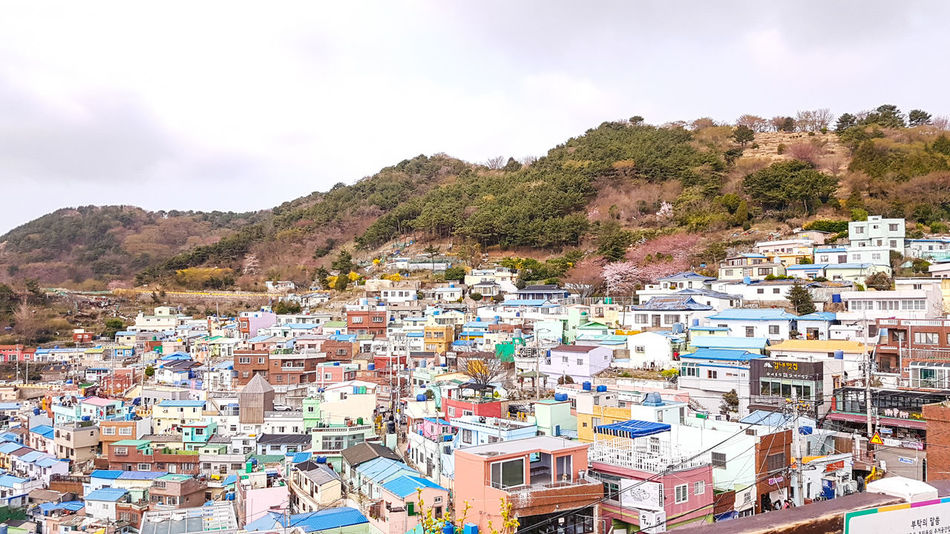 Mountain Multi Colored Outdoors Day Sky Crowd People Nature Sunlight Samsung Galaxy S7 Edge Samsungphotography South Korea🇰🇷 Photographing Gamcheon Culture Village