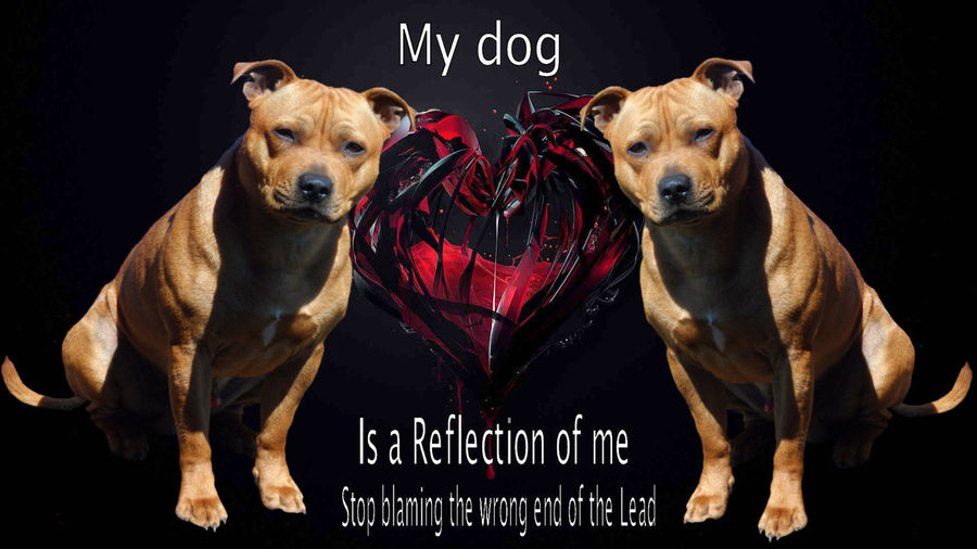 Punish The Deed Not The Breed Staffordshire Bull Terrier My Protector, My Life, My Dog