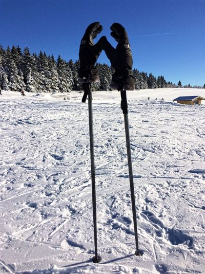 Snow Winter Cold Temperature Two People Weather Warm Clothing Full Length Clear Sky Mountain Outdoors Standing Ski Pole Sky Day Nature Adults Only Tree Adventure Landscape