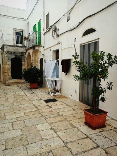 Cisternino Puglia Italy🇮🇹 Day Outdoors No People Built Structure Architecture Building Exterior Door