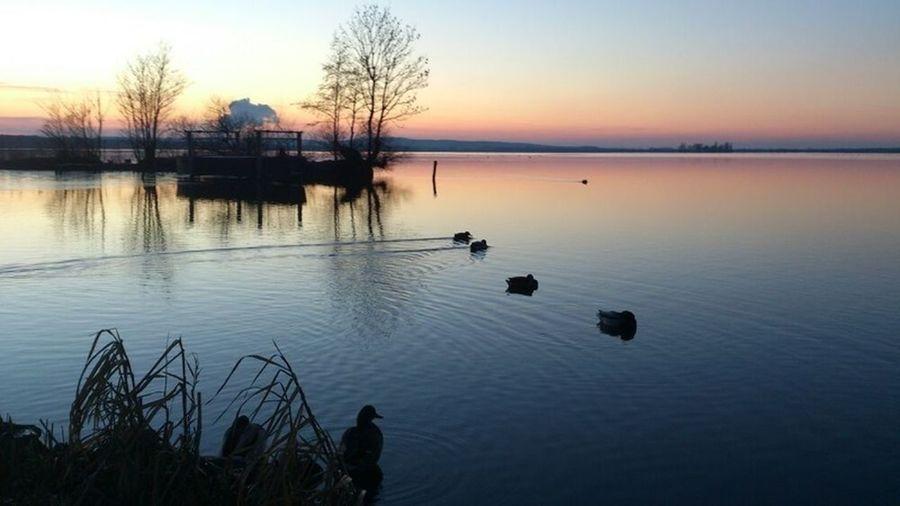 Steinhude Steinhude-am-meer.de - Dein Meer-Foto Water_collection EyeEm Nature Lover