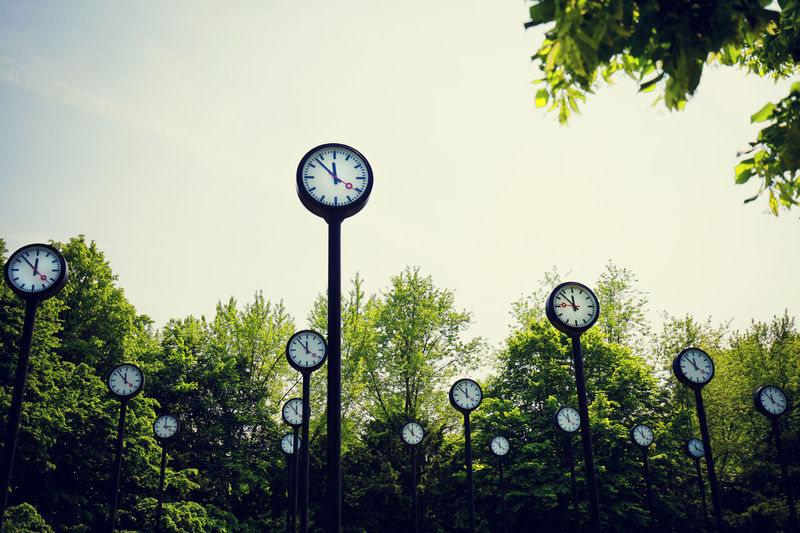 Plant Clock Tree Time Sky No People Nature Day Growth Green Color Circle Shape Instrument Of Time Outdoors Lighting Equipment Accuracy Geometric Shape Low Angle View Minute Hand Clock Face Many Clocks Before The Storm 5 To 12 Deadline Park Clock Park Hurry Up! Climate Change Time To Do It Now Copy Space Global Warming Fridaysforfuture Symbolism Stress Time Is Running Out Global
