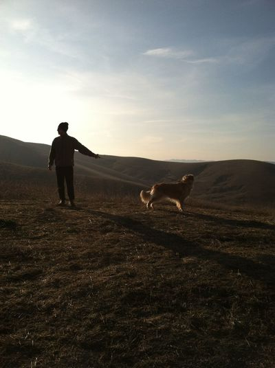 Rear view of woman standing with dog on grassland