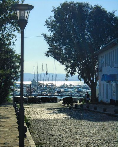 Yacht Club - Sozopol Tree Architecture Street Light Built Structure Building Exterior Transportation Road Clear Sky Water Sky Day Outdoors In Front Of No People Sea Footpath Yachtclub Sozopol Yacht Club Docks Road Street Paved Road Pavedstreet