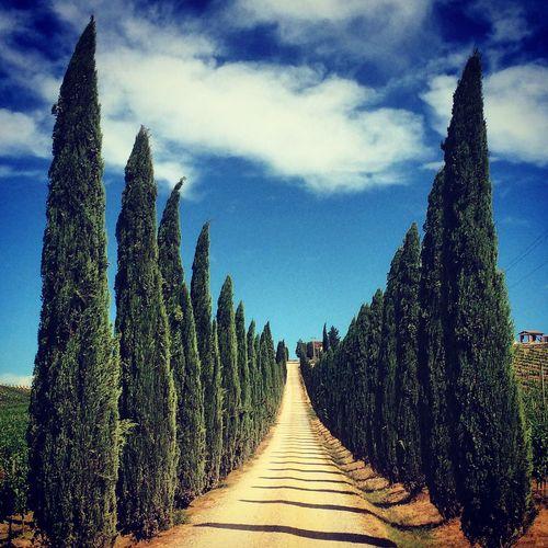 Toscana Toscane Tuskany