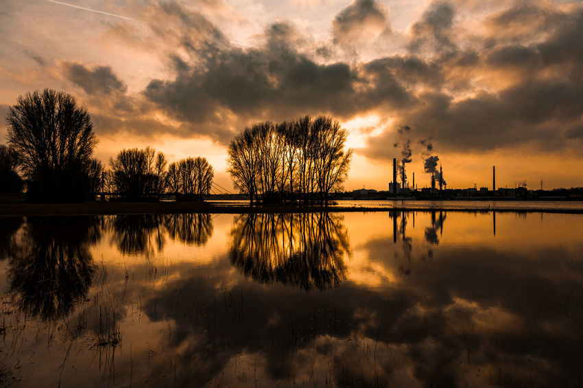 #rhinegrasslandskasslerfeld01 Duisburg EyeEm Best Shots EyeEm Nature Lover Rhein Architecture Beauty In Nature Built Structure Cloud - Sky Day Industry Nature No People Outdoors Reflection Scenics Silhouette Sky Sunset Tranquil Scene Tranquility Tree Water Waterfront