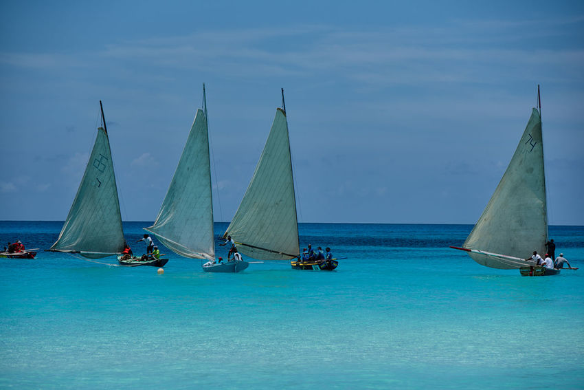 Four of Seven Bahamas Beautiful View Caribbean Competition Day Islandlife Leisure Activity Men Nature Ocean Outdoor Photography Outdoors People Photographyisthemuse Real People Regatta Sailing Seascape Sky Summer Travel Destinations Tropics Turquoise Water