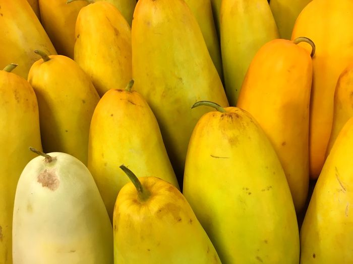 Yellow Cucumber Cucumber Healthy Eating Food Food And Drink Wellbeing Fruit Freshness Full Frame Market