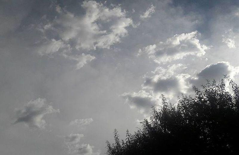 Un espectáculo asombroso son las nubes en el cielo y observar los cambios de coloración y formas ❤ me encanta Instasky Sky Greyclouds  Clouds Nubes NubesGrises Hermoso Beautiful Lovely