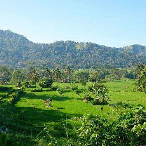 Xperiaphoto Bali
