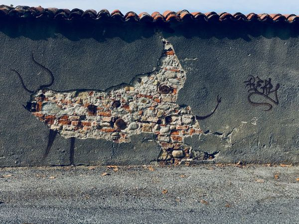 EyeEm Selects Bull Toro Art Is Everywhere Art Murales EyeEm Best Shots EyeEmItaly Italy Mondovì WeekOnEyeEm Wall EyeEm Masterclass