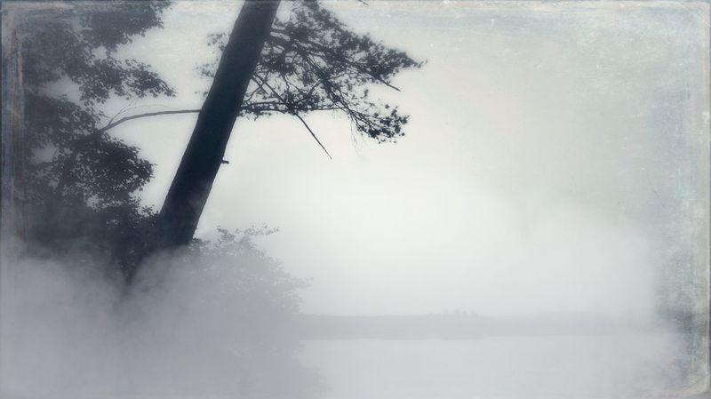 By the lake Landscape lake