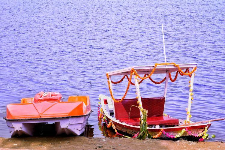 lake India Fish
