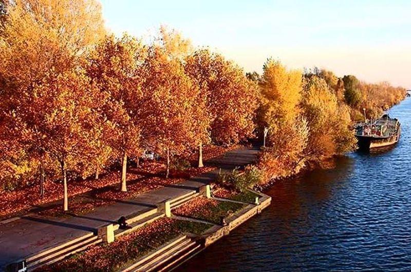 Eine von den schönsten Jahreszeiten.. Mein Herbst Vscocam Vscoturkey Vscvienna Vscoautmn