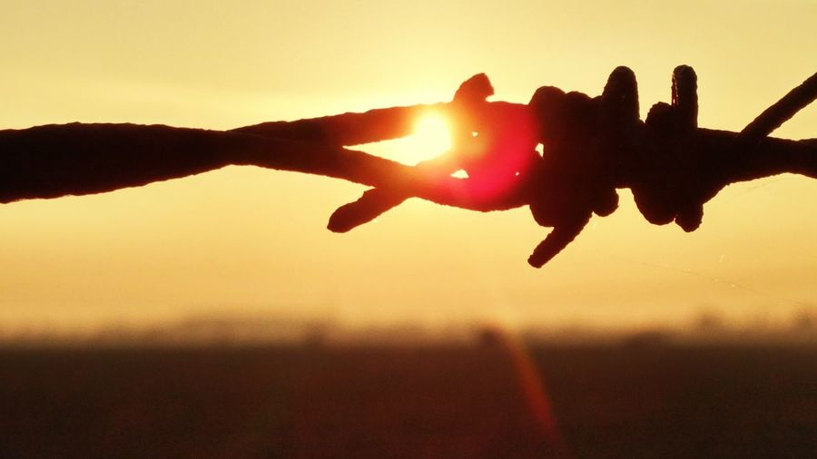 Close-up of silhouette barbed wire against sky during sunset