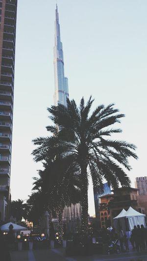 one word that speaks alot : Dubai?