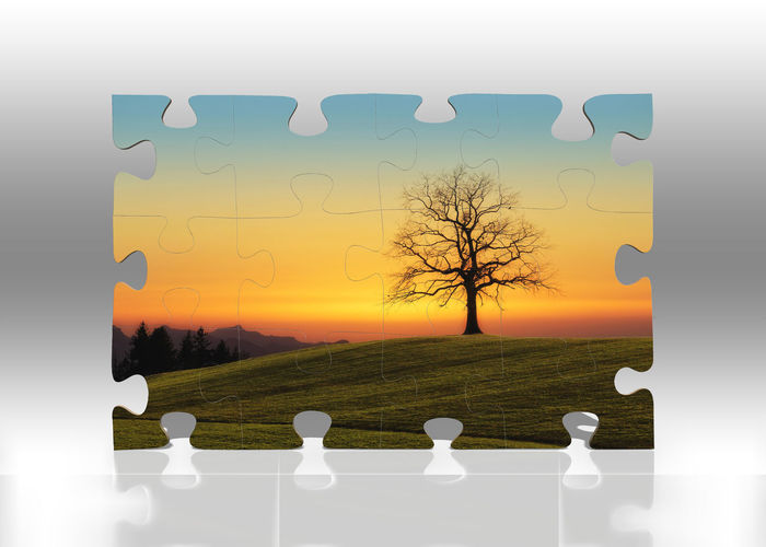 Tree Plant No People Sky Nature Green Color Bare Tree Sunset Beauty In Nature Digital Composite Grass Outdoors Cloud - Sky Environment Field Branch Tranquil Scene Landscape Growth Puzzle  Puzzles