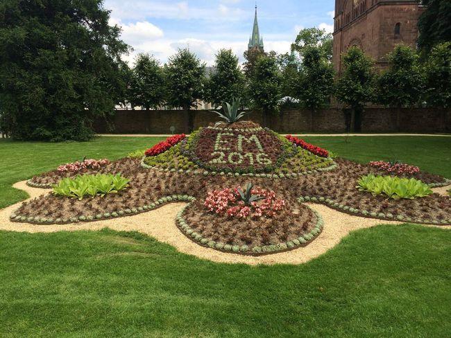 Em2016 Soccer⚽ Eurocup  Flowers Garden