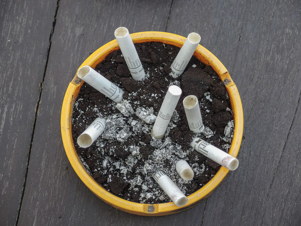cigarette butts on soil ashtray Bad Habit Smoking Issues Cigarette  Cigarette Butt Ashtray  Sign RISK Warning Sign No People Social Issues Communication Ash High Angle View Burnt Tobacco Product Close-up Table Still Life Messy Poisonous Butts Cigarette  Tobacco Ashtray  Soil