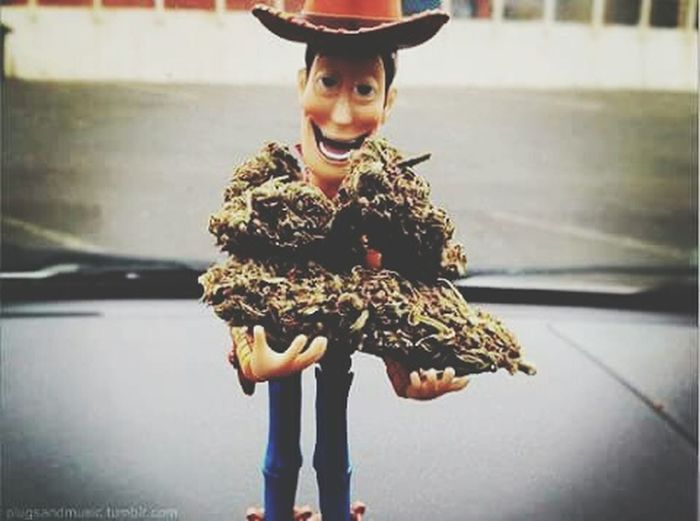 Weed Toy Woody Toystory
