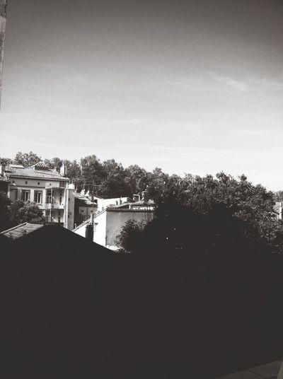 Toulouse ?✌️ Black&white
