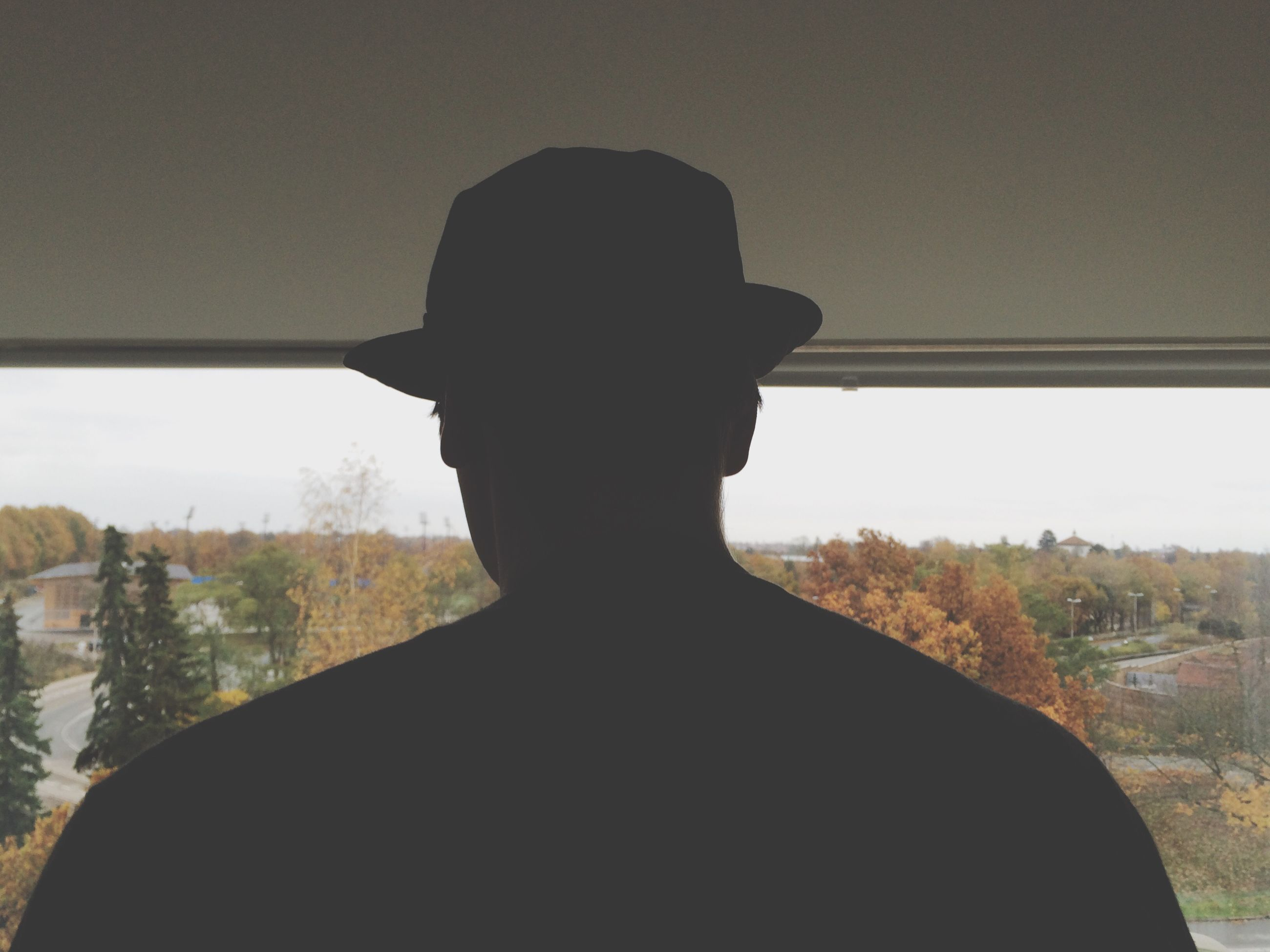 silhouette, lifestyles, leisure activity, waist up, standing, rear view, indoors, sky, men, clear sky, sitting, window, tranquility, nature, mountain, tree, landscape, person