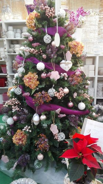 Flower Freshness Plant No People Bouquet Indoors  Flower Arrangement Fragility Nature Day Gift Flower Head Beauty In Nature Christmas Tree Close-up