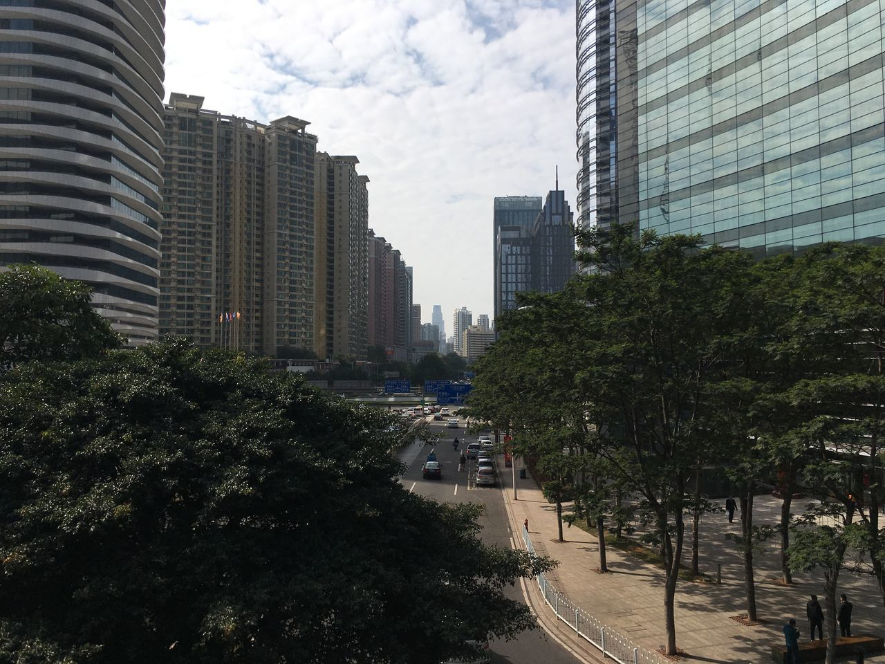architecture, building exterior, city, skyscraper, built structure, modern, tree, sky, day, growth, outdoors, road, city life, no people, cityscape