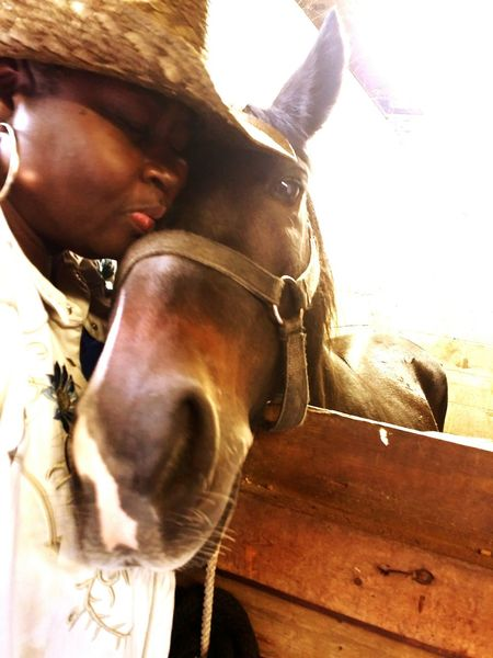 African American woman cowgirl beautiful love horse stall light One Person One Animal Urban Country Vertical