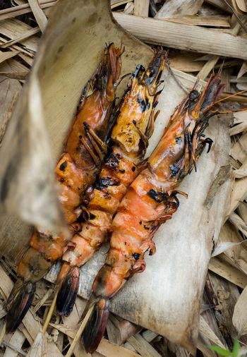 Bush Food Close-up Food Freshness Grilled Shrimps Healthy Eating Leaf Scampi Seafood Shrimps