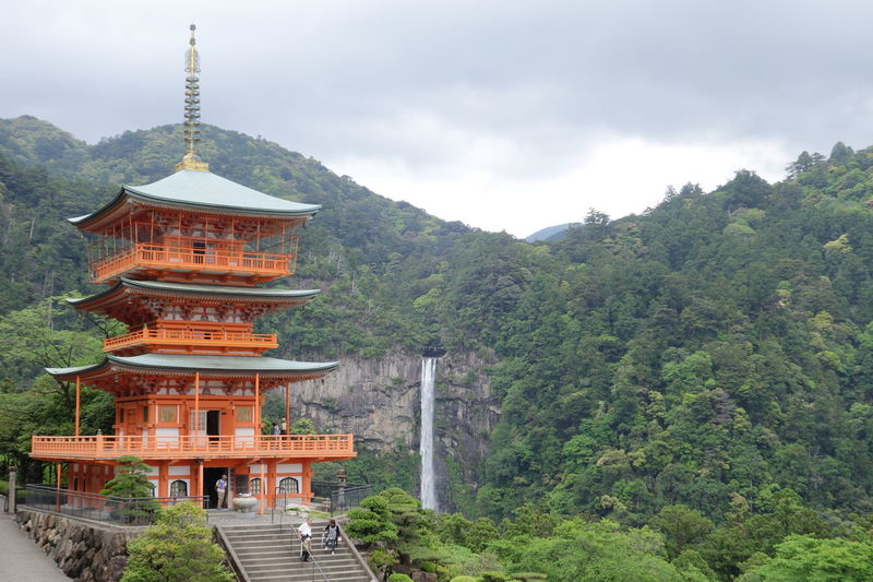 Green Holiday Japan Mie Nature Temple Traveling Tree Trees Trip Walking Worldheritage みえ