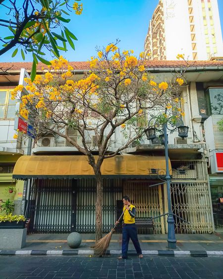 Full length of woman standing by tree against building