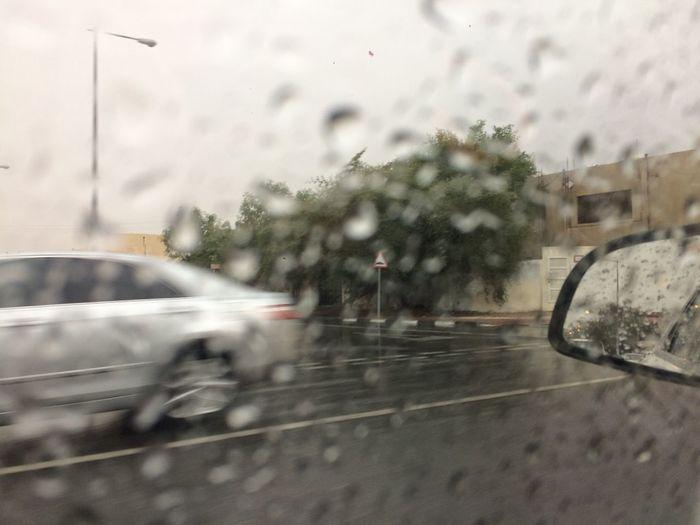 Amazing Amazing View Animal Themes Crazy Crazy Moments Hands Heavy Rain Rain Rain Heavy Rain Shesha Sky And Clouds