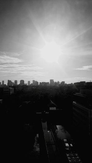 No People Outdoors Cloud - Sky Sky Tree City Day