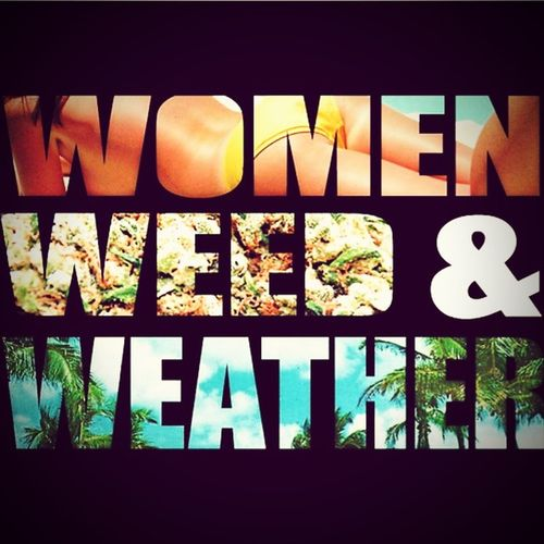 Quotes Quote Of The Day  Words Women Weed Weather Spring Has Arrived Throwsummo Love Great Views