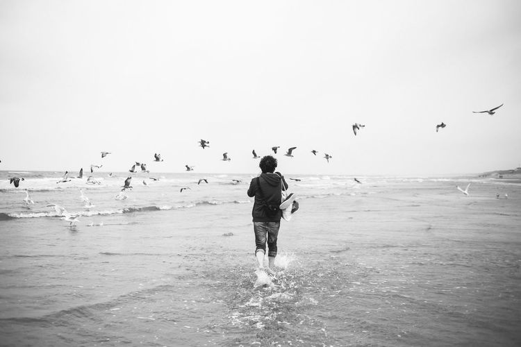 Young man running after birds Water Sea Sky Beach Land Real People Large Group Of Animals Leisure Activity Group Of Animals Flying Horizon Over Water Vacations Bird Day Nature Outdoors Flock Of Birds Seagull Blackandwhite