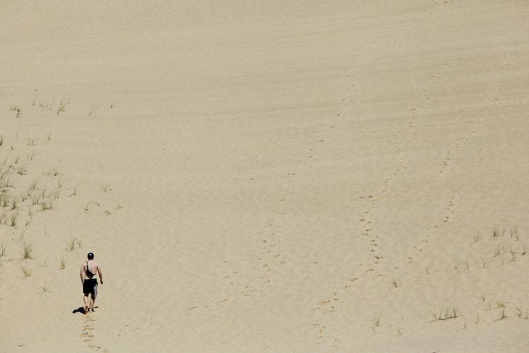 Beaches of Cape Cod, Provincetown Sand Desert Desert Beauty Lonly Eyem EyeEm Best Shots EyeEm Nature Lover Eye4photography  Eyemphotography Provincetown  Cape Cod Brother Family Warm Hot Day Relaxing USA Photos Sun
