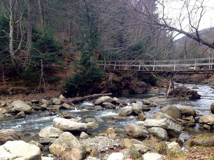 Карпаты горы Karpaty Streams Stream Carpathians Carpathian Mountains
