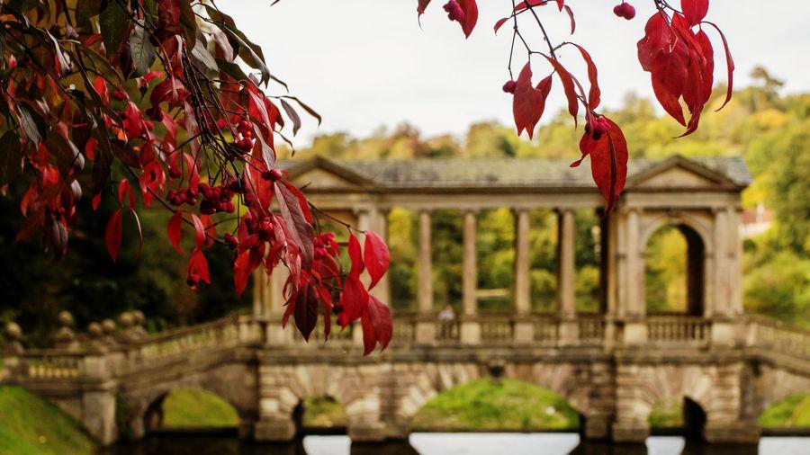 Bath Prior Park