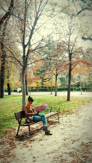 Leyendo en el Retiro Park Retiro Madrid SPAIN Reading Autumn Colors Autumn Autumn Leaves Full Length Men