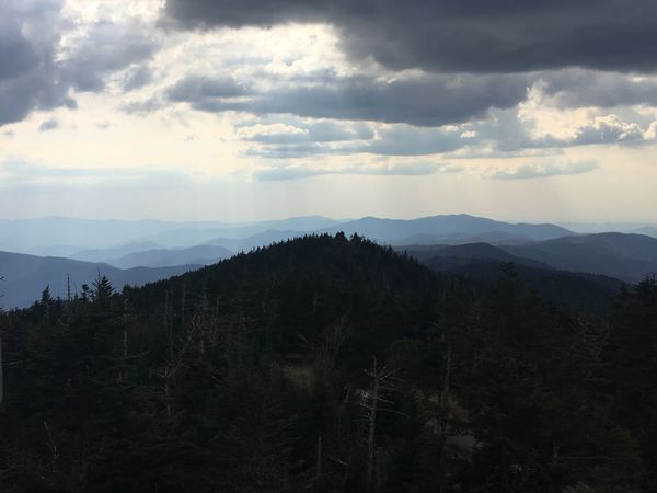Tranquility Mountain Nature Sky Forest Mountain Range Outdoors Adventure Landscape Trees Mountains Nature Photography Travel Photography Photography Hiking Photography Hiking North Carolina Tennessee Clingmans Dome Appalachian Mountains Appalachian Trail Naturephotography Smoky Mountains